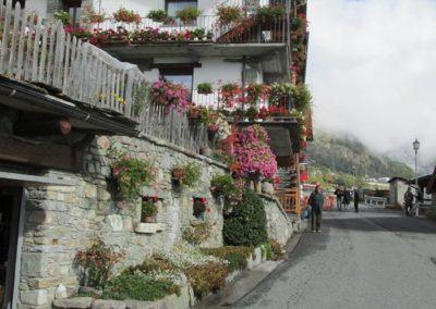 Doues - lopanner 2018il villaggio de lo Coudrey